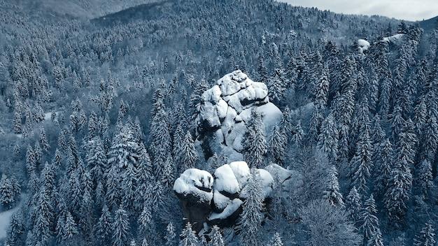 Berg in het midden van een bos tegen een blauwe lucht met dramatische zware wolken. antenne