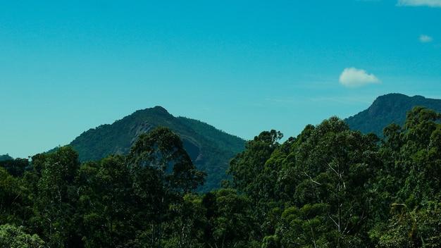 Berg van de basis van de westelijke ghats