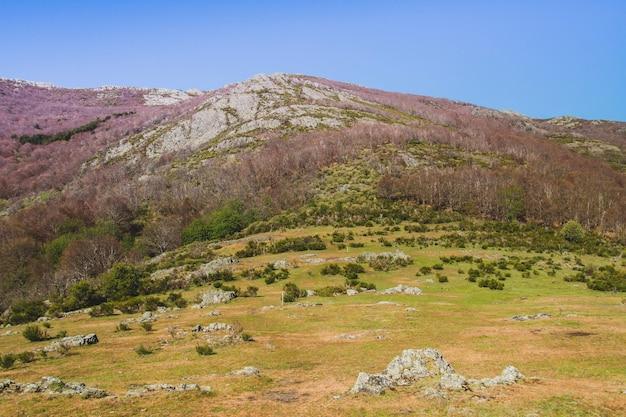 Bergachtig platteland