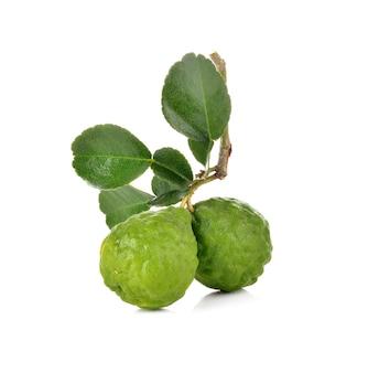 Bergamotfruit op witte muur