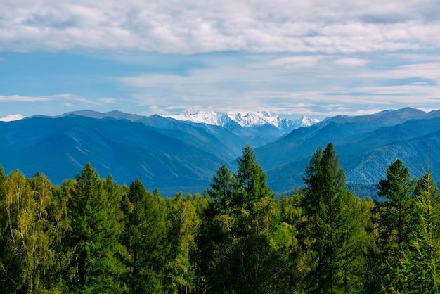Bergdal, het gouden landschap van het de herfstpanorama, mening van beluha bij zonnig weer, altai republic, rusland
