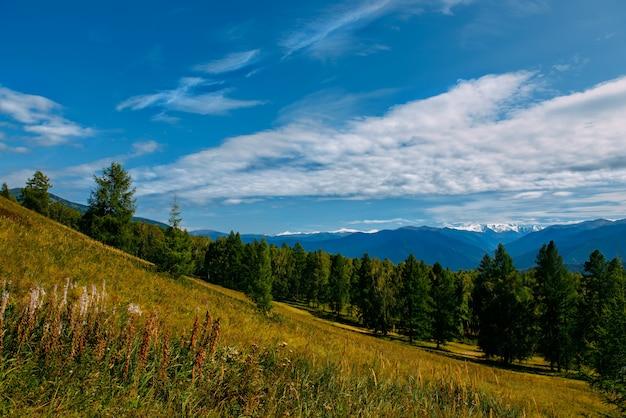 Bergdal met bewolkte hemel, gouden herfst panorama landschap, altai republiek, rusland