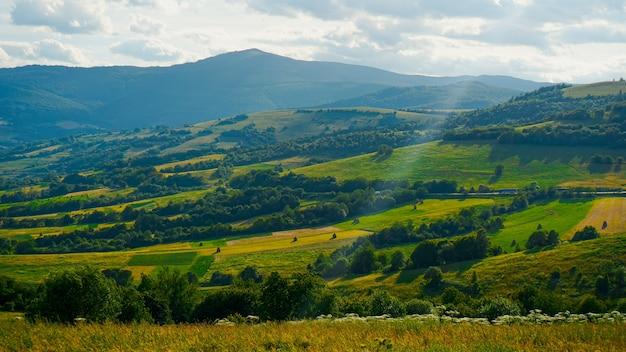 Bergdal. natuurlijke zomer landschap. horizontale banner achtergrond. kopieer ruimte achtergrond.