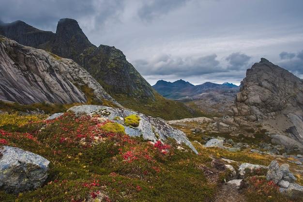 Bergen boven het vissersdorpje nusfjord,