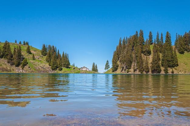 Bergen en bomen in zwitserland, omringd door het meer lac lioson