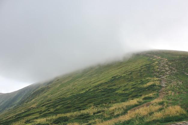 Bergen en mist
