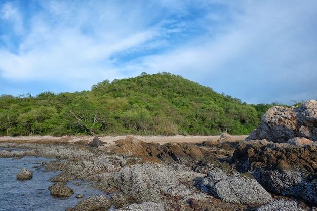 Bergen en rotsen van de kust in de dag.