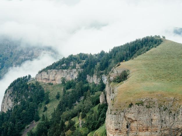 Bergen natuur frisse lucht stoom mist bomen mooi landschap.