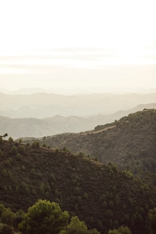 Bergen van bos met witte hemel