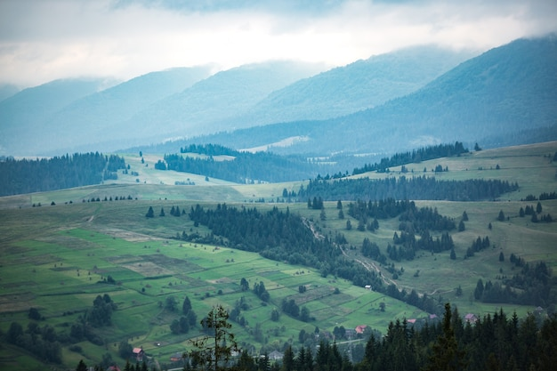 Bergen variëren met groene weide en onweerswolken in de avond