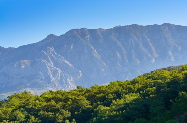 Bergketen en coniferen bij zonsopgang. kalkoen.