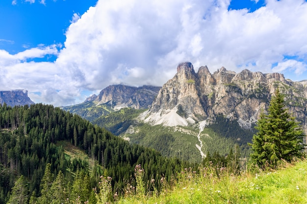 Bergketen van de italiaanse dolomieten omgeven door bos. trentino-alto adige, italië
