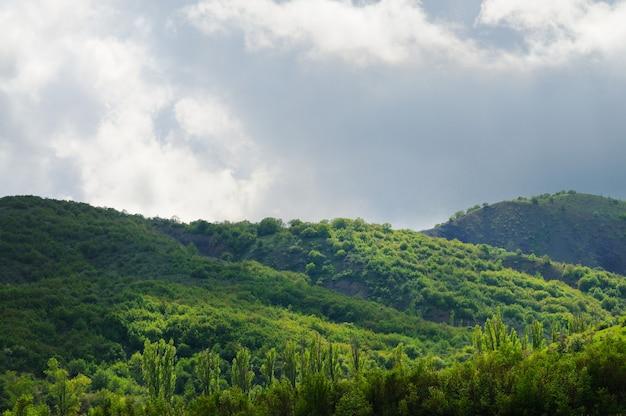 Bergketens bedekt met bos en struiken