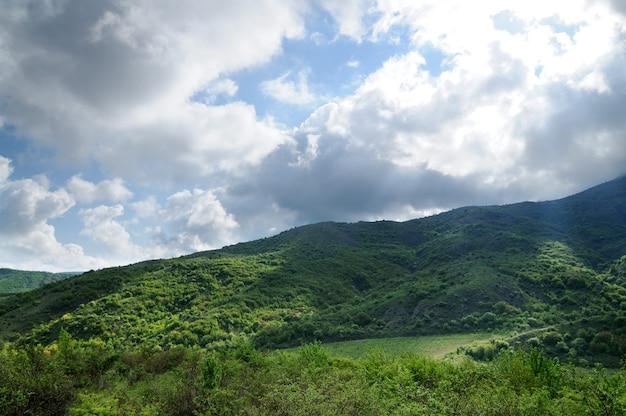 Bergketens en heuvels bedekt met bos, struiken en planten