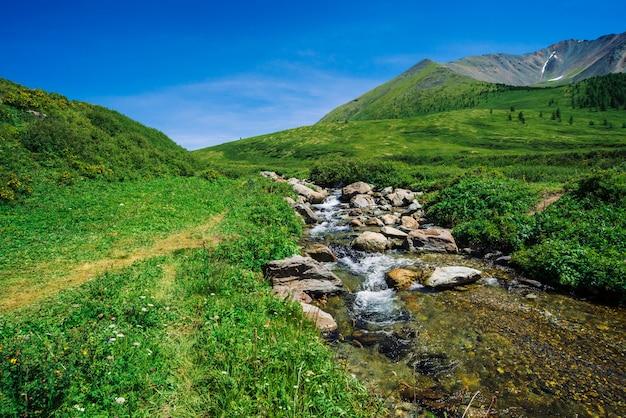 Bergkreek in groene vallei onder rijke vegetatie van hoogland in zonnige dag. snelle waterstroom van gletsjer onder blauwe heldere hemel. reus besneeuwde bergen achter de heuvel. levendig landschap van majestueuze aard.
