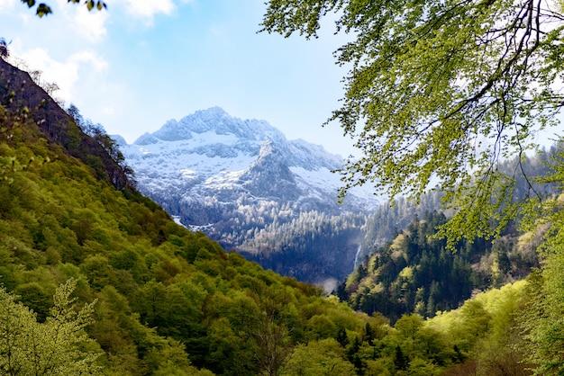 Berglandschap in de pyreneeën, frankrijk