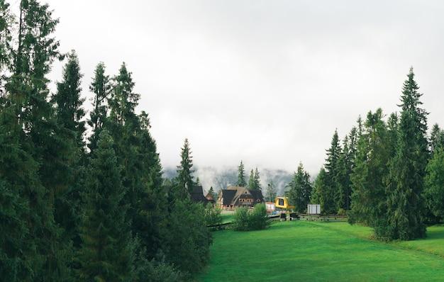 Berglandschap met huis en dennenbos