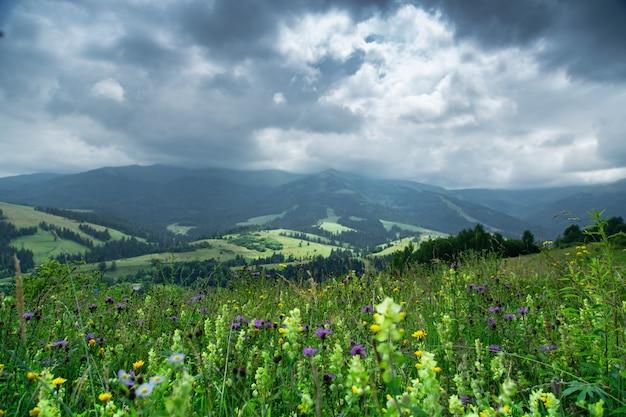 Berglandschap met onweerswolken bij dageraad in de regen