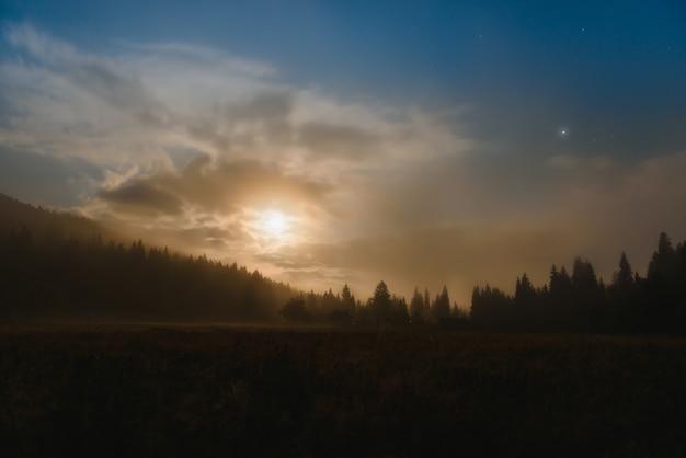 Berglandschap pijnbomen in de buurt van vallei en kleurrijk bos op heuvel onder blauwe lucht met wolken en mist in maanlicht 's nachts