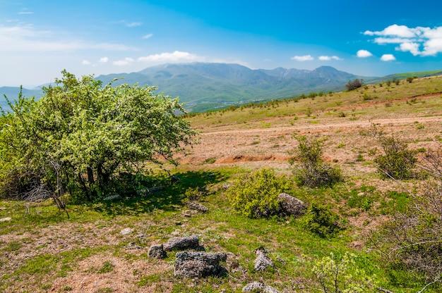 Berglandschap, weide met groen gazon, klein dorp en heuvels in de verte, witte wolken in de lucht