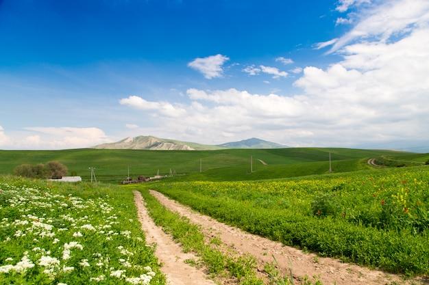 Berglandweg tussen groene bloeiende heuvels