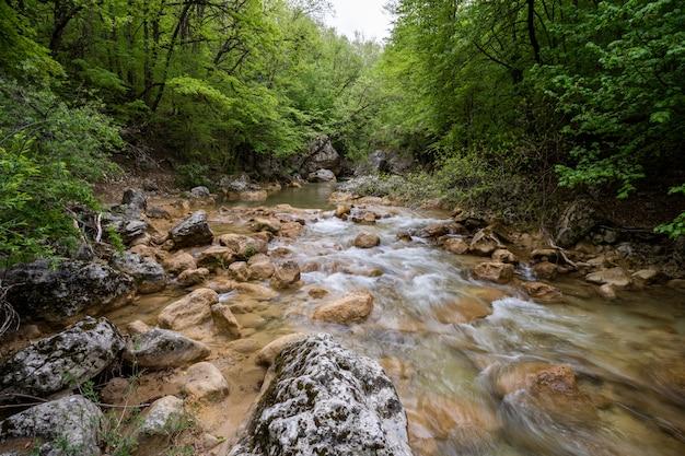 Bergrivier die door het groene bos vloeien