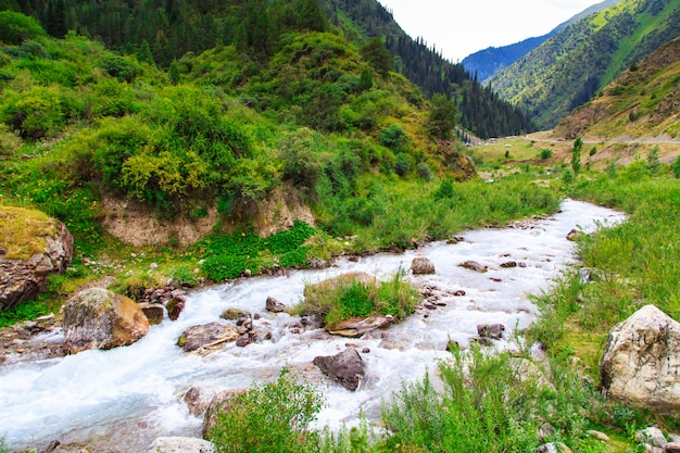 Bergrivier tussen groene bergen