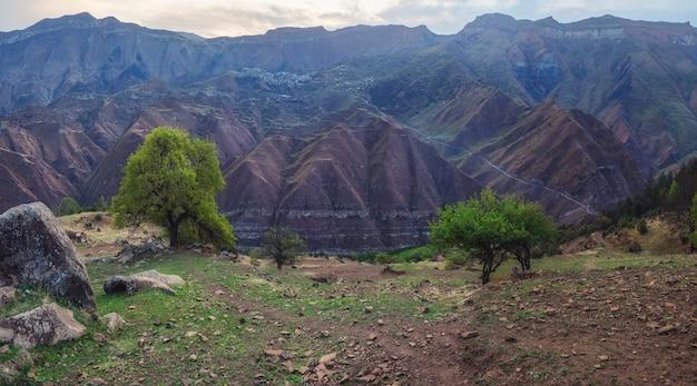 Bergterrein bij dageraad. hoge bergen, een complex berglandschap, met groene vegetatie begroeide hellingen. dagestan. panoramisch zicht.