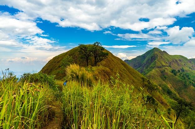 Bergtop bereik landschap.