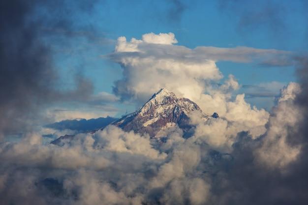 Bergtop boven de wolken, mt hood, oregon, usa.