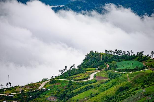 Bergweg bij (phu tubberk) in het nationale park van phu hin rong kla