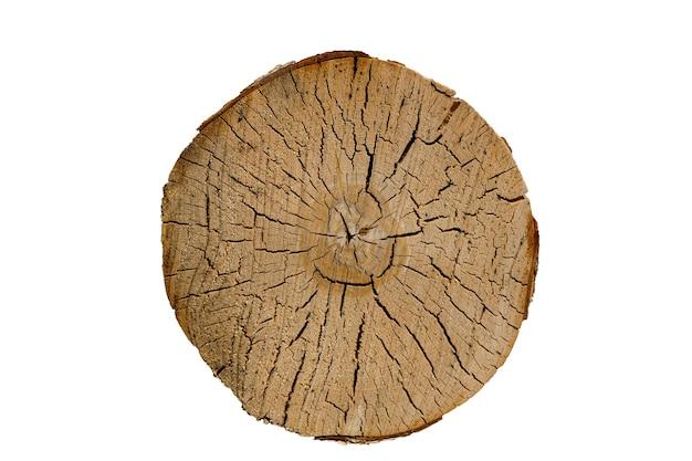Berkenstam met scheuren. hout textuur. ronde gesneden boom geïsoleerd op een witte achtergrond. hoge kwaliteit foto