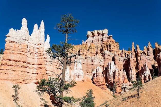 Beroemde navajo trail in bryce canyon, utah, verenigde staten