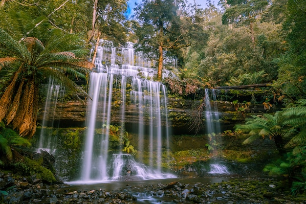 Beroemde russell falls, mount field national park, tasmanië