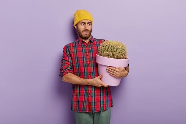 Beschaamd europese man houdt pot met cactus, gekleed in vrijetijdskleding, heeft een ongelukkige gezichtsuitdrukking