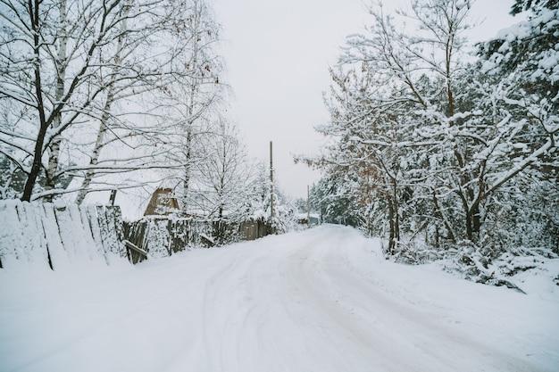 Besneeuwd russisch dorp dichtbij het bos