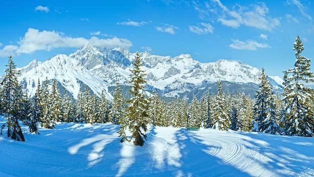 Besneeuwd wintersparrenbos, skisleur en dachstein-bergmassief (uitzicht vanaf de top van papageno-bahn - filzmoos, oostenrijk)