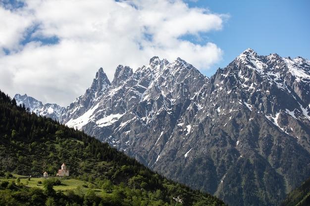 Besneeuwde bergen en groen bos