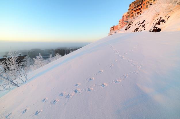 Besneeuwde berghelling met dierensporen in de sneeuw.
