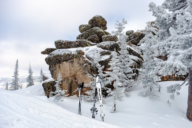 Besneeuwde bomen en bergskiën op de top van de berg actieve winterontspanning sheregesh-skigebied in rusland