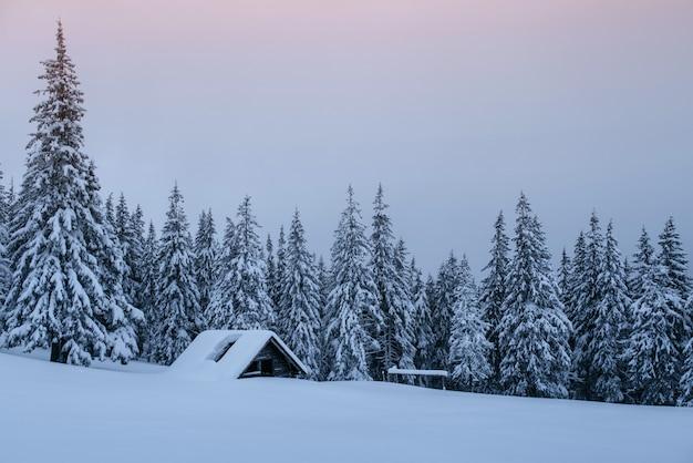 Besneeuwde bossen in de karpaten. een klein gezellig houten huis bedekt met sneeuw. het concept van vrede en winterrecreatie in de bergen. gelukkig nieuwjaar