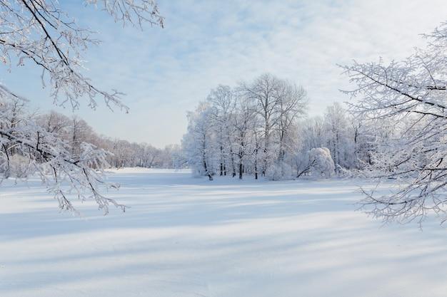 Besneeuwde en zonnige winterdag in rusland.