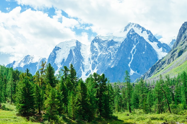 Besneeuwde gigantische bergketen. rotsachtige bergrug met sneeuw.