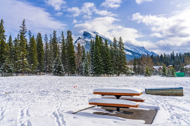 Besneeuwde houten bank in banff recreation grounds in de winter banff national park canadian rockies
