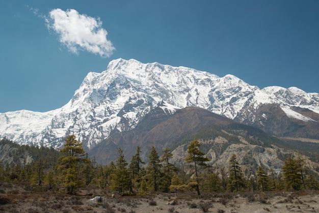 Besneeuwde tibetaanse bergen, uitzicht vanaf annapurna-trektocht