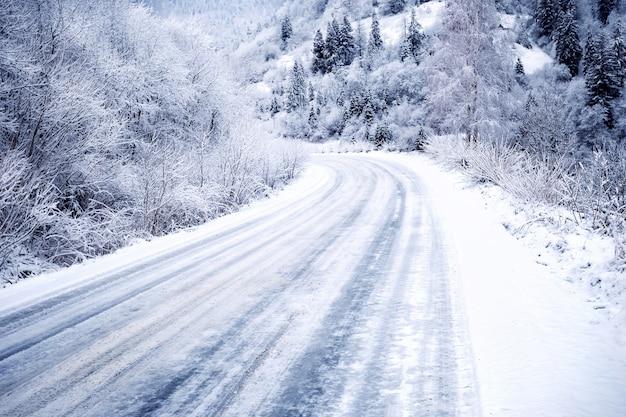 Besneeuwde weg in het bos