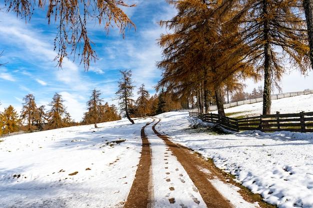 Besneeuwde weg in zuid-tirol, dolomieten, italië