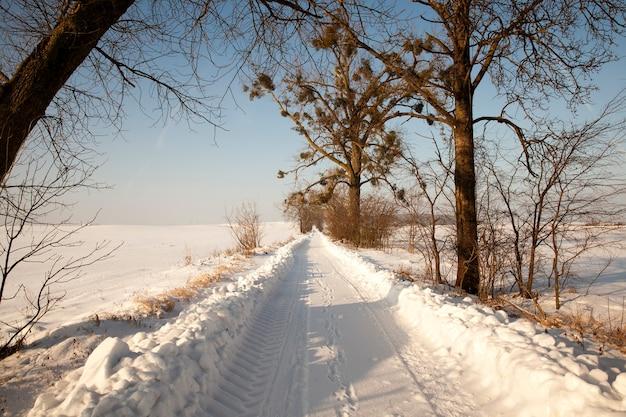 Besneeuwde weg op een zonnige dag