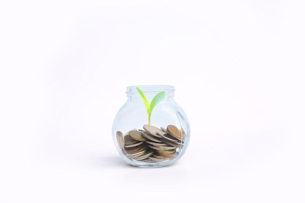 Bespaar geld concept - munten in een glazen pot met een plant