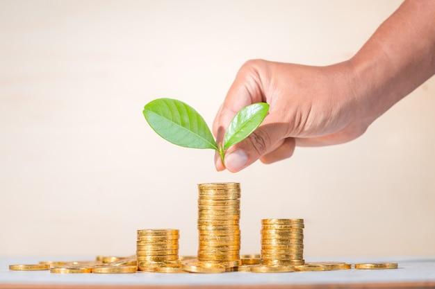 Besparing, bedrijf opgroeien concept achtergrond